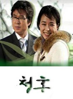 求婚2國語版